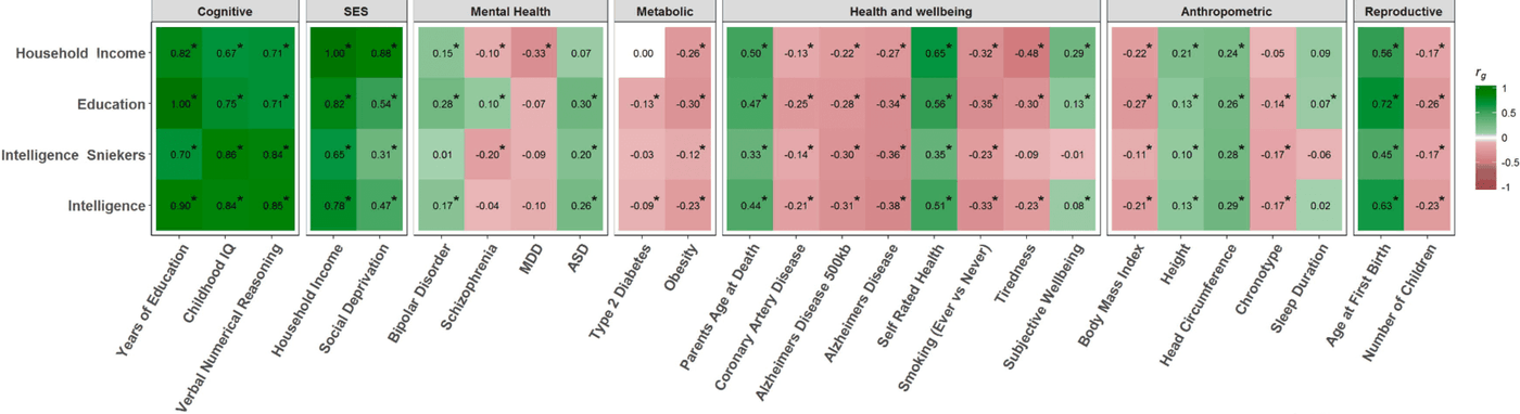 "From Hill et al 2017: ""Figure 4. Heat map showing the genetic correlations between the meta-analytic intelligence phenotype, intelligence, education, and household income, with 26 cognitive, SES, mental health, metabolic, health and well-being, anthropometric, and reproductive traits. Positive genetic correlations are shown in green and negative genetic correlations are shown in red. Statistical significance following FDR correction is indicated by an asterisk."""