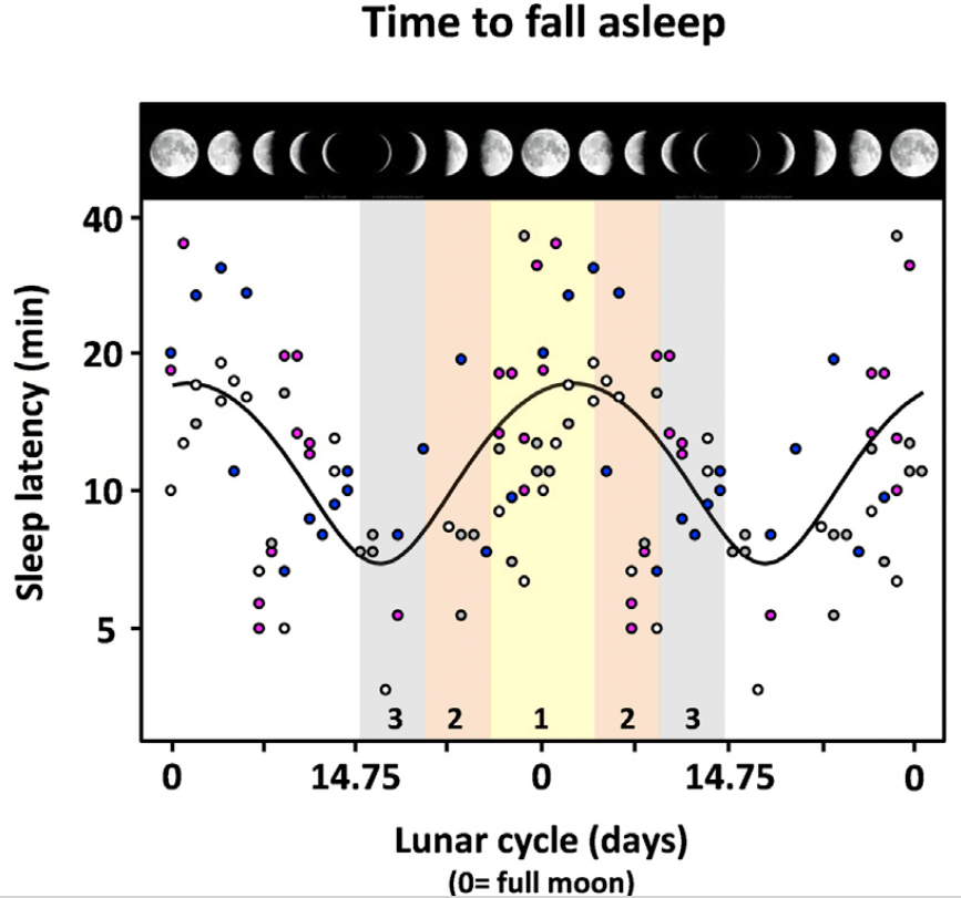 """Figure 1. Time to Fall Asleep and Lunar Phase; Each data point (total of 64 nights double plotted) represents EEG-defined sleep-onset time (i.e., sleep latency: time between lights off and the first EEG occurrence of stage 2 sleep in minutes). The different color-coded symbols depict the different gender and age groups: pink for young women, blue for young men, white for older women, and gray for older men. Note: a lunar-phase (pictures upper abscissa)-dependent distribution could be fitted with a sinusoid function [f = y0 + a \cdot \sin(2 \cdot \pi \cdot \frac{x}{b} + c); goodness of fit, r = 0.46]. The colored boxes delineate the moon classes 1, 2, and 3, with moon class 1 comprising nights that occurred - 4 and + 4 days around full moon, moon class 2 comprising nights that occurred 5 to 9 days before and after full moon, and moon class 2 comprising nights that occurred 10 to 14 days before and after full moon."""